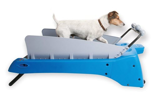PetZen-DogTread Dog Treadmill Review