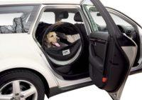Petego Pet Tube Kennel Reviews
