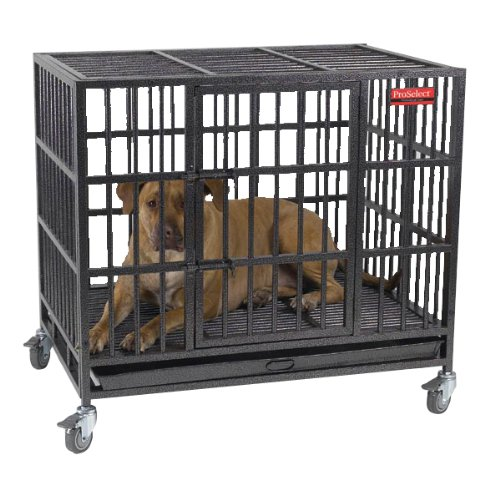 ProSelect Empire Color Cage for Pets pros cons