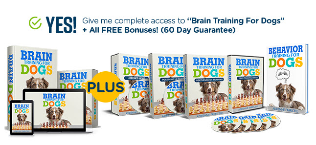 Brain Training Dogs Pros Cons