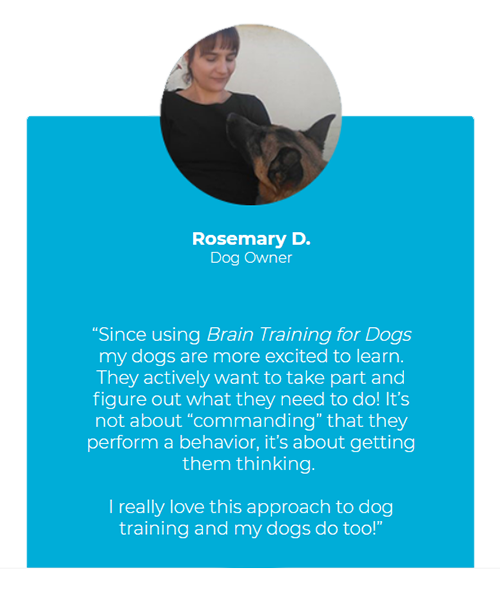 brain training for dogs testimonial 1