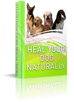 Heal Your Dog Naturally Review