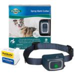Best Bark Collar for Dogs - Anti Barking in 2020